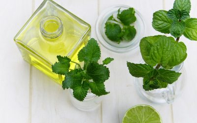 Oils That Can Help Alleviate Allergies